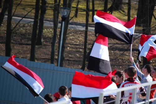 Sakalai pasisiuvo naujų vėliavų. Tik spalvų deriniai man keistoki... ech... senatvė...